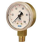 Type 111.11 Standard Series Compressed Gas Regulator Gauge